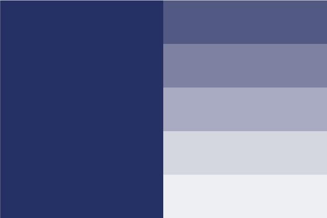 AMAI TLP Color secundario