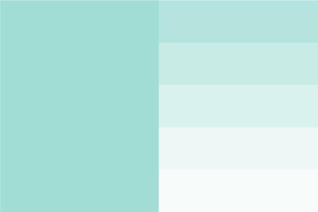 AMAI TLP Color 3
