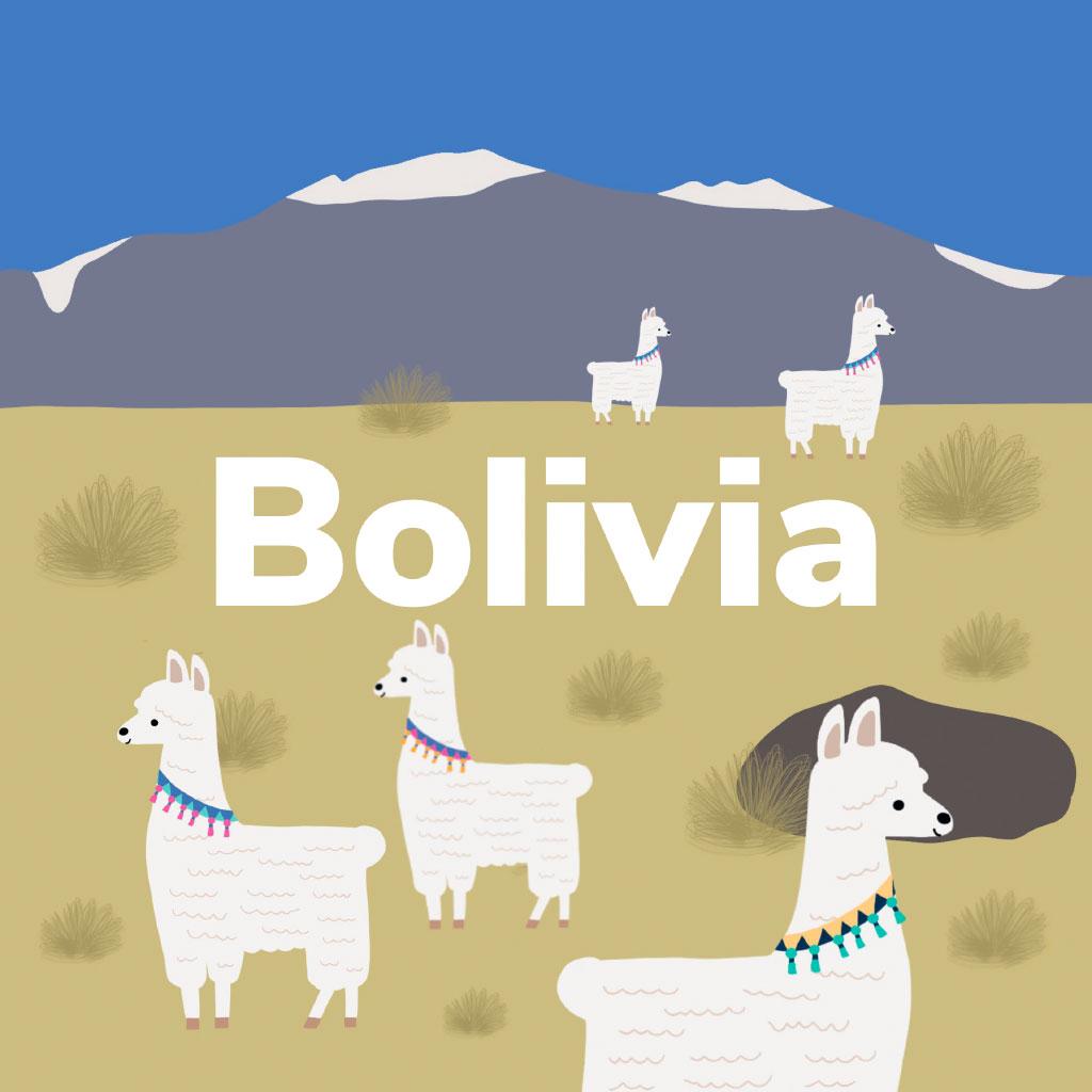 Ilustración portada Bolivia
