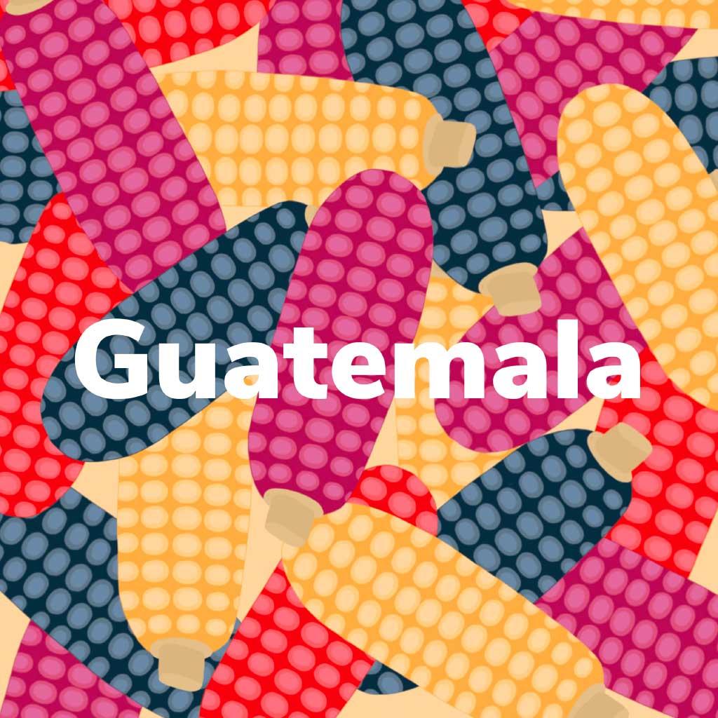 Ilustración portada Guatemala